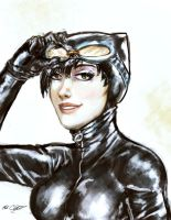 Catwoman bust by Mark-Clark-II