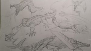 dragon doodles by spinosaurus1