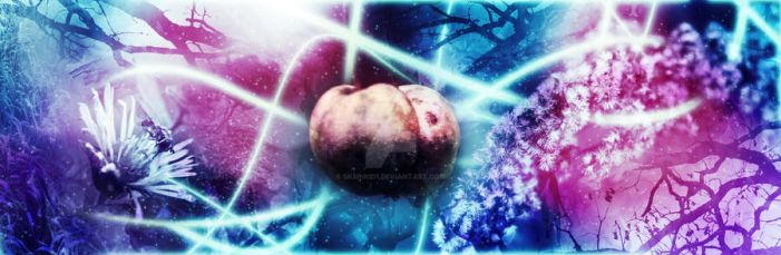 Fruit of Life by sk8inkid1