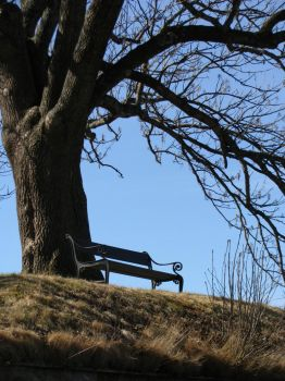 Just a bench by sartre-erise