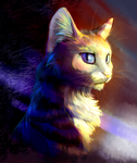 cosmo cat by pondis-dant