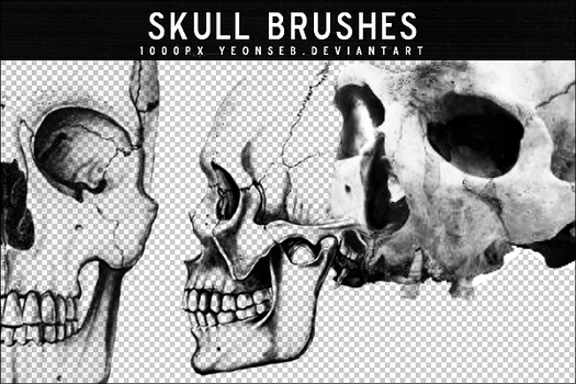 SKULL BRUSHES by Yeonseb