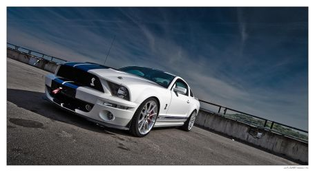 Mustang 01 by miki3d
