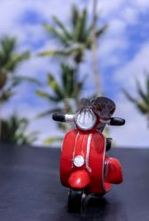 Sabbath - Red Moped Ride - 7128 by creative1978