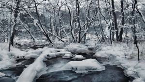 Snowy River II by Pajunen