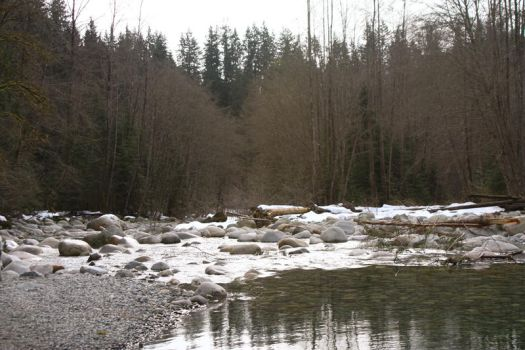 Canadian Creek by editordistriktmag