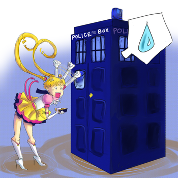 ... While Pounding  the Tardis by It-is-a-circle