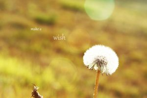 make a wish by depthdweller
