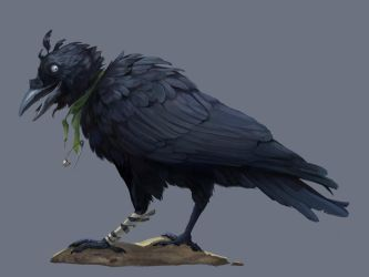 Crow by kepperoni