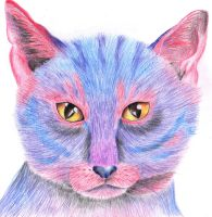 Pink and Blue Cat by x----eLLiE----x
