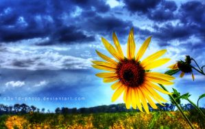Last Breath of Summer by d3v1d-photo