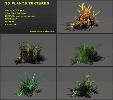 Free 3D plants textures 01 by Yughues