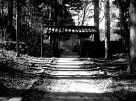 Nikko path by RisingsunDesigns
