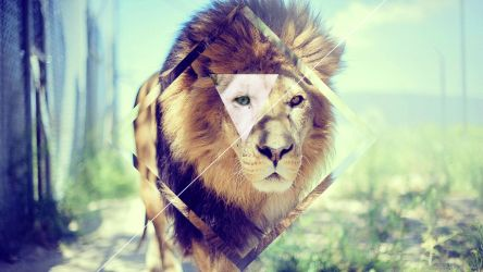 Hipster Wallpaper Concept Lion by Centoste