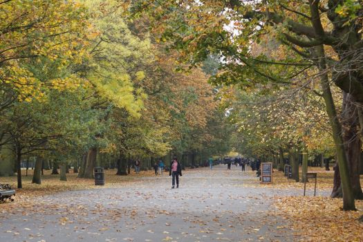 Autumn in london part 2 by Rossco19