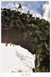 Ivy Arch HDR by C16FiRe