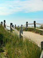 Cape Cod Collection 02 by nw15062
