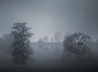 Fog Lake III by BBs-Brushes