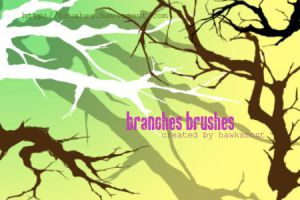 Branches by hawksmont