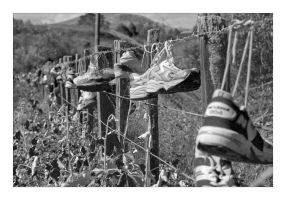 Where good shoes go to die by anjules