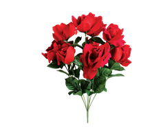 ROSE PNG TRANSPARENT USE FREELY by TheArtist100