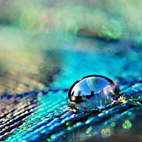 view in a drop by nicolehinrichs