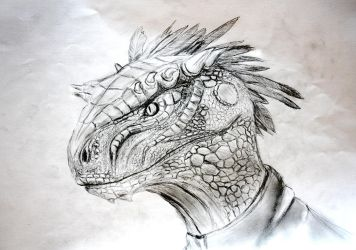Argonian face (photographed version) by Spynder4