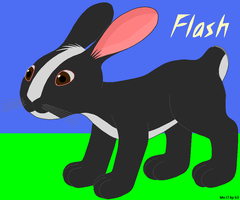 Flash the bunny by oneuglybunny