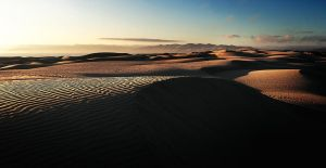 Dalis Dunes by fistfulofneurons