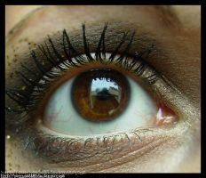 Brown Eye by Butthead483