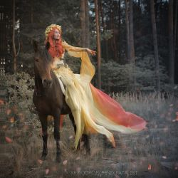 Lady on the horse by fenixfatalist