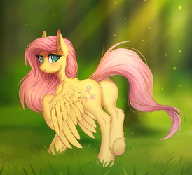 Fluttershy in the forest by Margony
