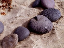 Beach stones 3 by Evicas