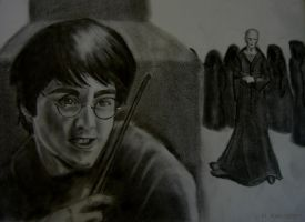 Harry and Voldemort, Book Four by CKTalons