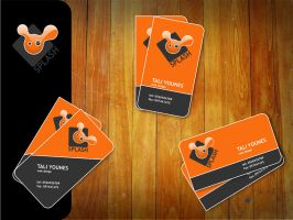 splash business card by AndexDesign