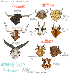 Minotaur Races of Looming Gaia by The-Greys