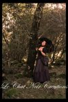 Gothic Snow White_IV by LeChatNoirCreations