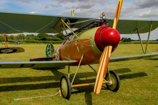 Albatros D.Va (Reproduction) by Daniel-Wales-Images