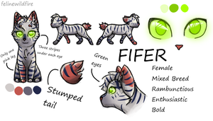 Fifer OC Ref Sheet by felinewildfire