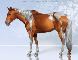 American paint horse by AonikaArt