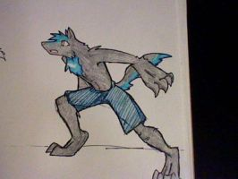 Rave Wolf Form by RaiinbowRaven