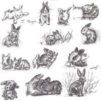 YAY BUNNIES xD by Umberink