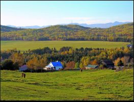 Country Scene in Fall by JocelyneR