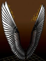 18ft Folding Costume Wings PREVIEW by EuTytoAlba