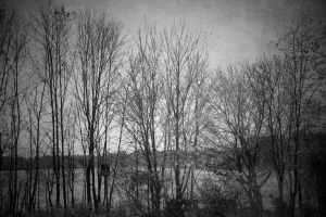 All that remains by snaphappy101