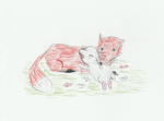 Bunny Cuddling a Red Fox by Woofs-Four-Ever