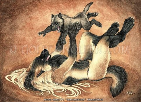 Play Time by Goldenwolf
