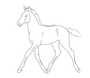 Foal Lineart - Free Use by Junepony