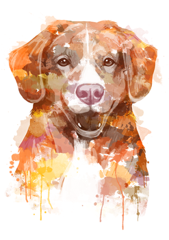 Watercolor dog portrait commission 3 by hopeakorento