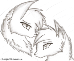 Crowy and Leaf sketch by Spottedfire94